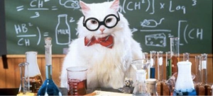 science_cat