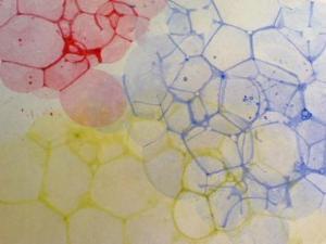 bubbleprint6
